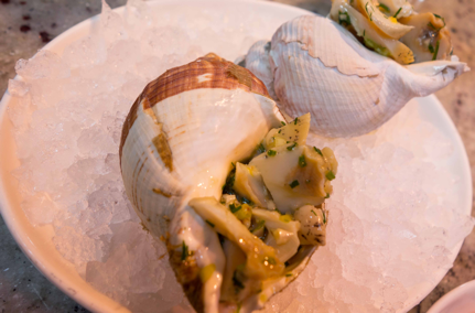 1_oysters